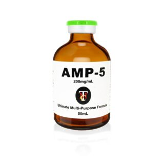 AMP5_rev3