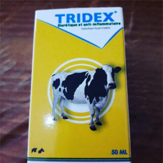 TRIDEX