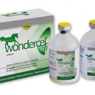 Wondercef