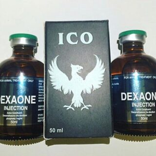 DEXAONE