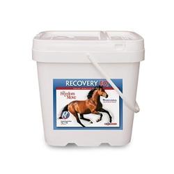 Recovery EQ Powder, 11 lbs