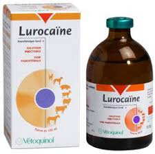 LUROCAINE 50ml