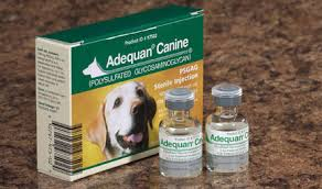 adequan canine