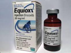 EQUIOXX