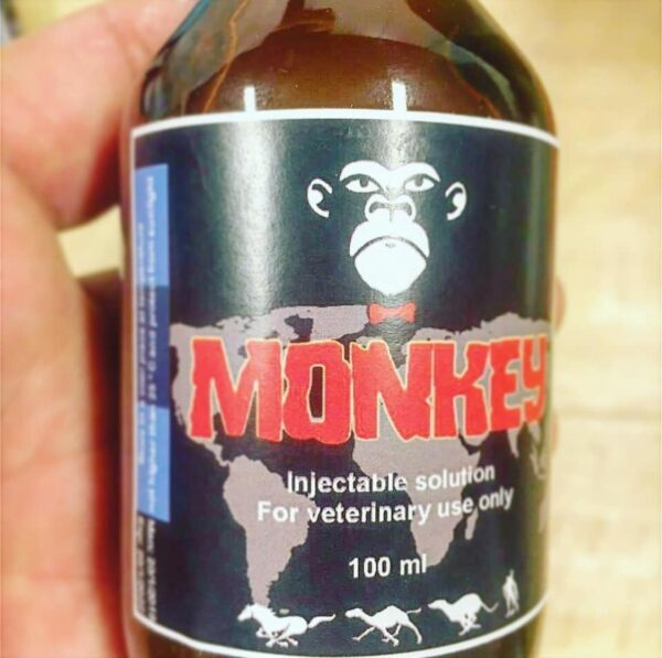 monkey injectable solution